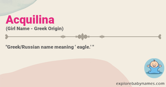 Meaning of Acquilina